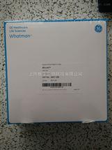 GE WHATMAN玻纤滤纸Grade 934-AH玻璃纤维滤纸1827-150
