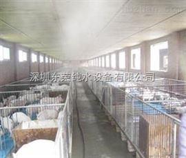 家禽批发市场消毒