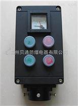 FZC-S-A2B1D2K1G防水防尘防腐操作柱