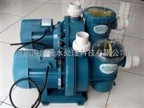 泳池水凈化設備 循環水泵