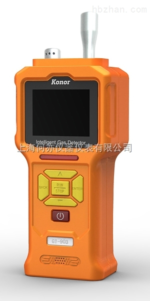 GT-903-CH4泵吸式甲烷检测仪