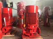 英迪XBD5/25-100ISG立式管道消防泵