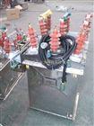 ZW8-12M智能型永磁真空断路器/远程操作