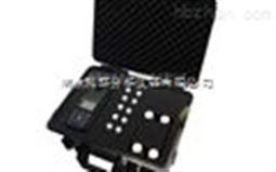 PMULP-4C型便携式多参数测定仪