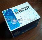 大鼠白介素6(IL-6)ELISA试剂盒