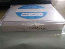 WHATMAN沃特曼代理聚碳酸酯膜PC过滤膜8um孔径110414