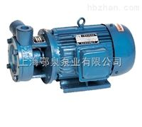 1W型单级漩涡泵1W型单级漩涡泵