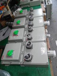 BXX52-T4防爆检修箱非标防爆电源箱4回路带总开关