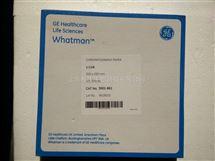 WHATMAN沃特曼1Chr层析纸色谱纸杂交滤纸20*20cm货号3001-861