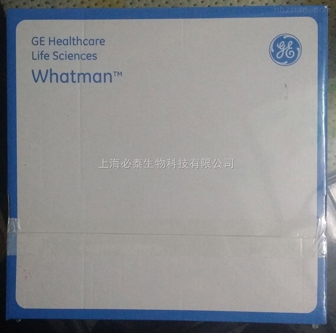 Whatman 沃特曼 纤维素定性滤纸 Grade 6