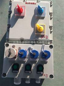 BXS-2/16两回路防爆检修电源插座箱