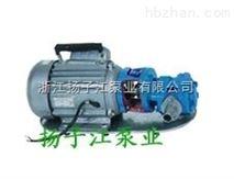 扬子江油泵:WCB手提式不锈钢齿轮油泵