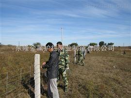 网围栏建设.网围栏安装.网围栏多少钱一米
