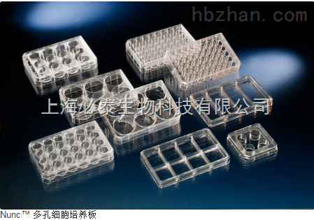 NUNC  6孔细胞培养板 货号140675