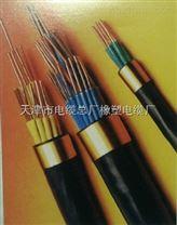 電話通訊電纜HYA53 HYAT53 WDZ-HYA
