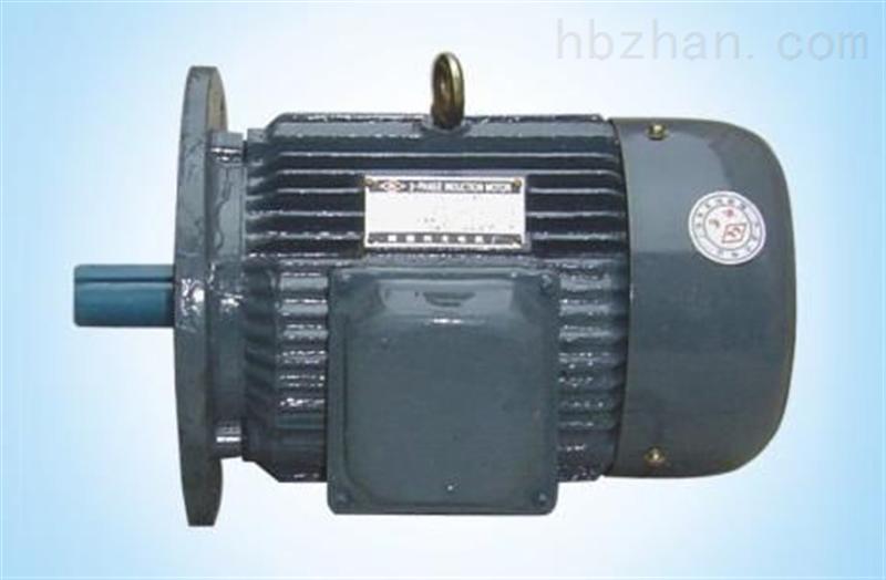 立式型电机