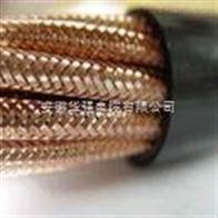 DJFFP2R高溫計算機電纜