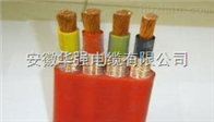 YGCPB-0.6/1KV-3*95+1*50/扁電纜