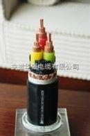 變頻電纜BPYJVP12R 3*10+3*1.5