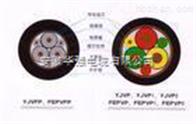 ZR-BPYJVTP2-3*25+3*6變頻電纜
