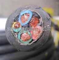 YCW 3*4+1*2.5 橡膠電纜