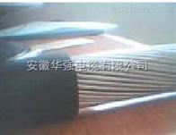 鎧裝控製電纜KVV32-4*6