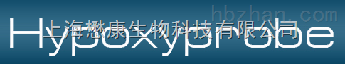 HP1 HypoxyprobeTM-1 Kit 缺氧探针检测试剂盒