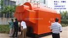 DZH系列生物质蒸汽锅炉