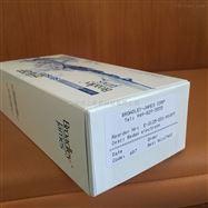 E-3125-ED1-M10FF電極;E-3125型ORP電極