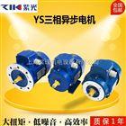 YS7126 清华紫光电机,ZIK紫光电机,蜗轮减速机