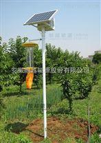 安徽朗越锂电智能型太阳能杀虫灯  用于蔬菜瓜果基地