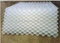 西北工业大学蜂窝斜管瓷砂滤料塑料滤砖