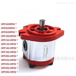 1PF1.1L01B02GRH齿轮泵