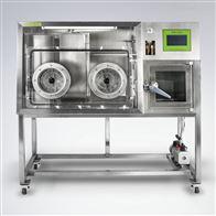 上海龍躍LAI-D2厭氧培養系統(厭氧工作站)