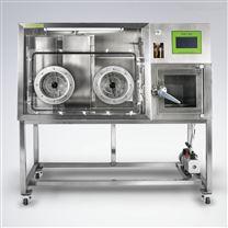 上海龙跃LAI-D2厌氧培养系统(厌氧工作站)