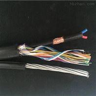 索道通信电缆HYAC+RVVP