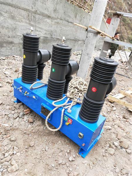 高原型35KV真空断路器ZW32参数