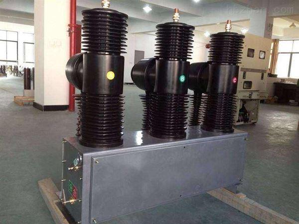 工厂直销35KV户外不锈钢小型真空断路器