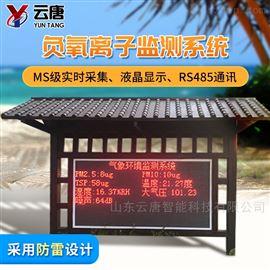 YT-YL-100(新款)负氧离子监测设备