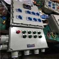 BXMDBXM(D)户外防爆箱,立式,带防雨罩