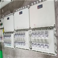 BXMDBXM(D)51系列防爆照明(动力)配电箱