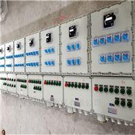 BXMDBXM(D)-DIP粉尘防爆照明动力配电箱