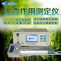 光合作用测量系统