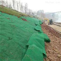 厂家供应绿色三维植草网