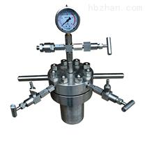 不锈钢简易高压反应釜