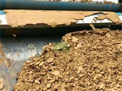 重庆河道污泥脱水机质量好