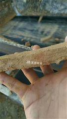 湖北矿山砂石场泥浆脱水厂家