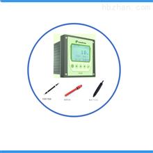 在线离子测量仪