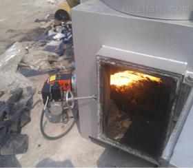 吉林垃圾焚烧炉