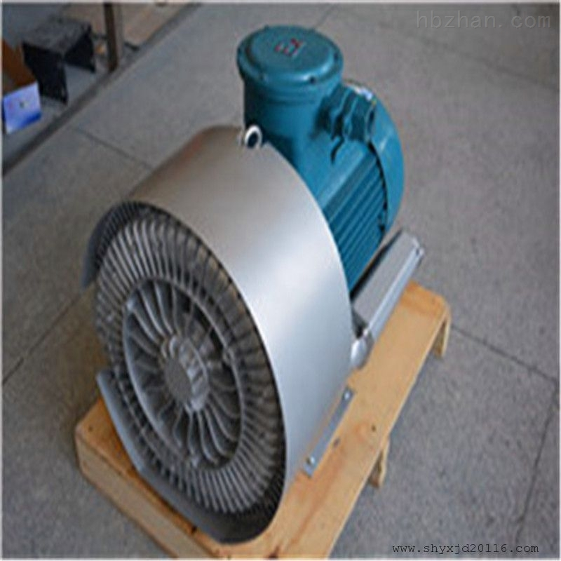 曝气专用双叶轮漩涡气泵